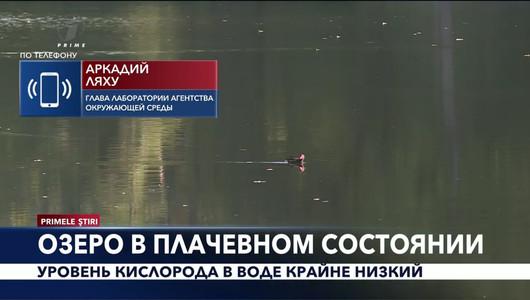 Primele Știri în limba rusă - 10 octombrie 2019, 18:00