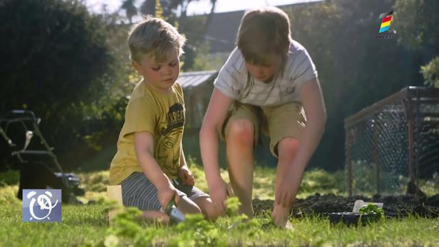 Află cum influențează grădinăritul asupra sănătății