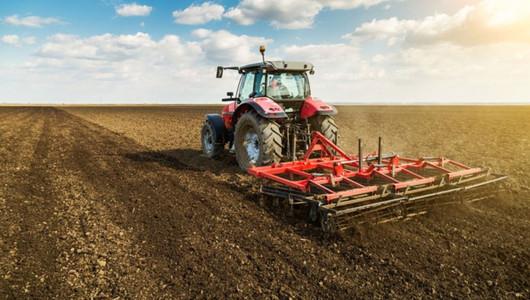 Semănatul grâului de toamnă se amână cu aproape o lună din cauza secetei