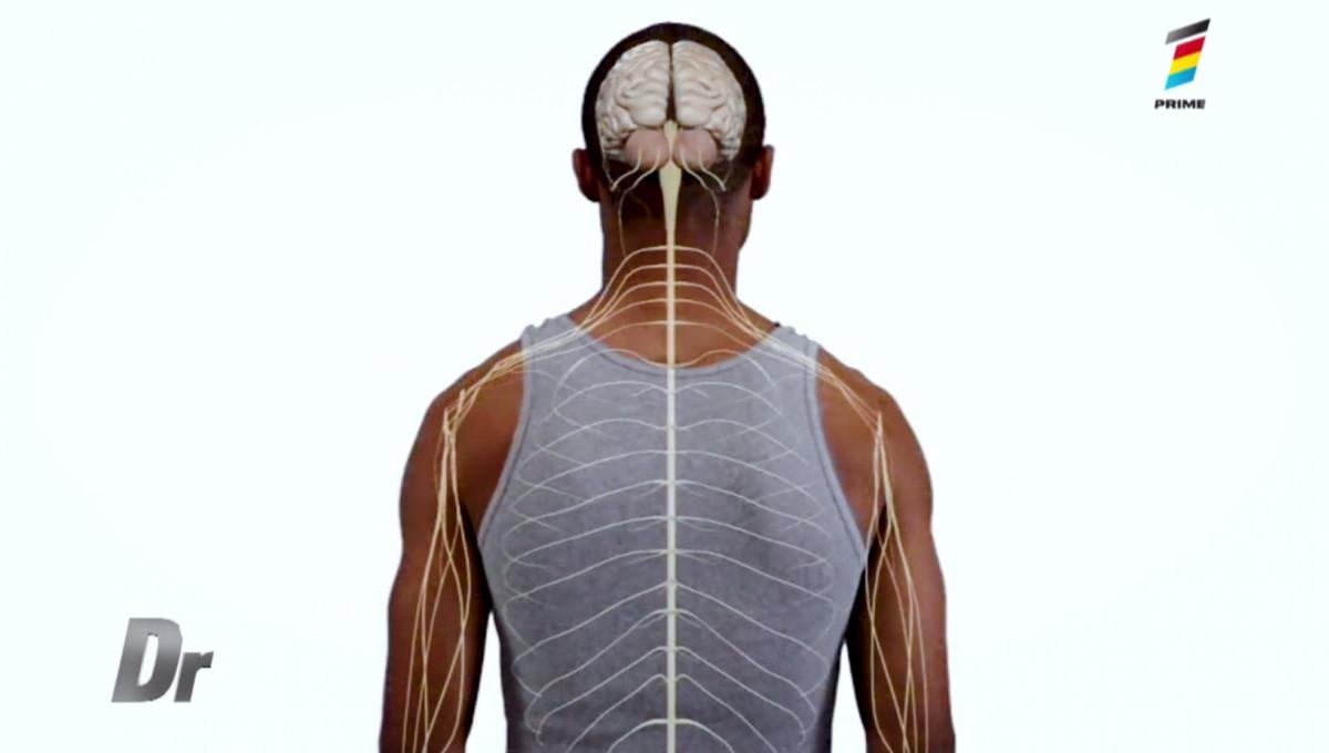 de ce pocnesc oasele se acumulează artrita în articulații