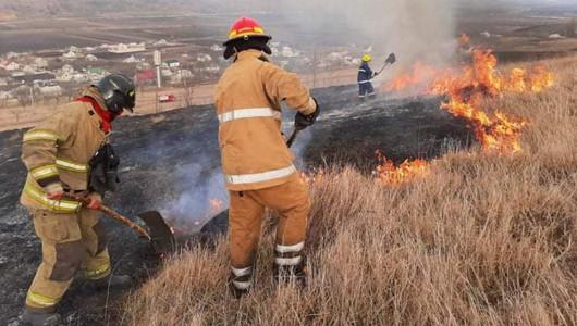 Sfârșit cumplit pentru un bărbat din Florești! Corpul neînsuflețit al acestuia a fost găsit ars, într-un incendiu de vegetație