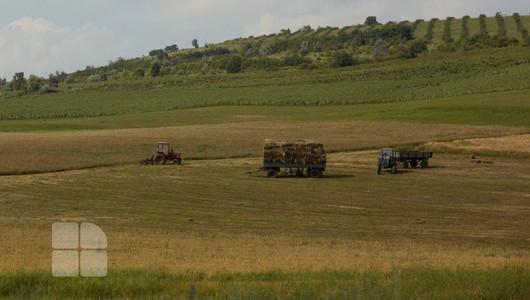 Scumpirea carburanților lasă agricultorii cu roada pe deal. Autoritățile îi hrănesc, deocamdată, doar cu promisiuni