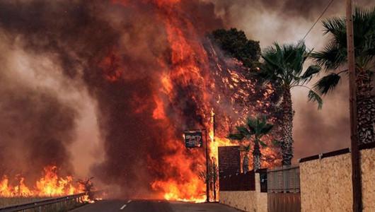 Столица Греции в огне. Из-за лесных пожаров из Афин эвакуировали сотни людей