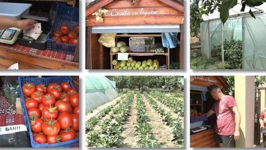 Жительница Тимишоары открыла овощную лавку с самообслуживанием. И мы о ней рассказываем в новостях!