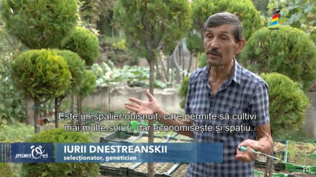 Un colțișor de rai! Iurie Dnestreanschii are propria grădină botanică... acasă